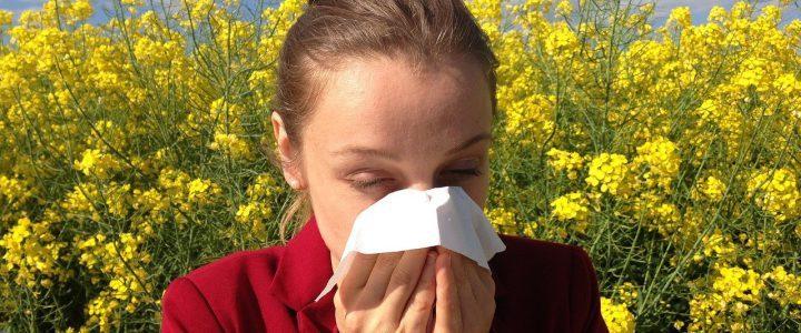 Natürliche Hilfen bei Allergien
